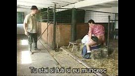 Taranca grasa se fute in grajd langa animale si vaci